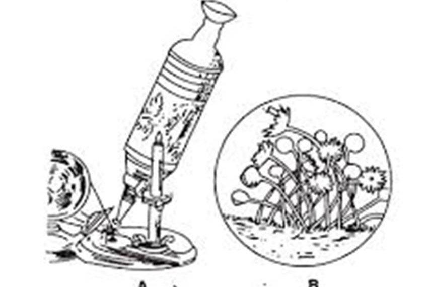 Mikrobiyoloji tarihi