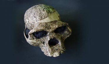Paleoantropoloji