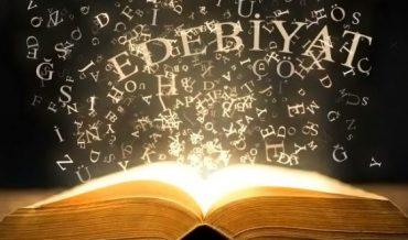 Edebiyatta Roman ve Hikaye Türünde İlkler